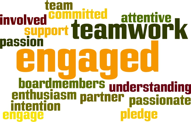 nonprofit board engagement